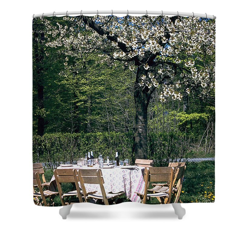 Lunch Shower Curtain featuring the photograph Lunch by Flavia Westerwelle
