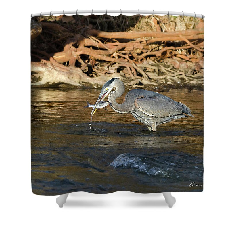 Heron Shower Curtain featuring the photograph Lunch On The Neuse River by George Randy Bass