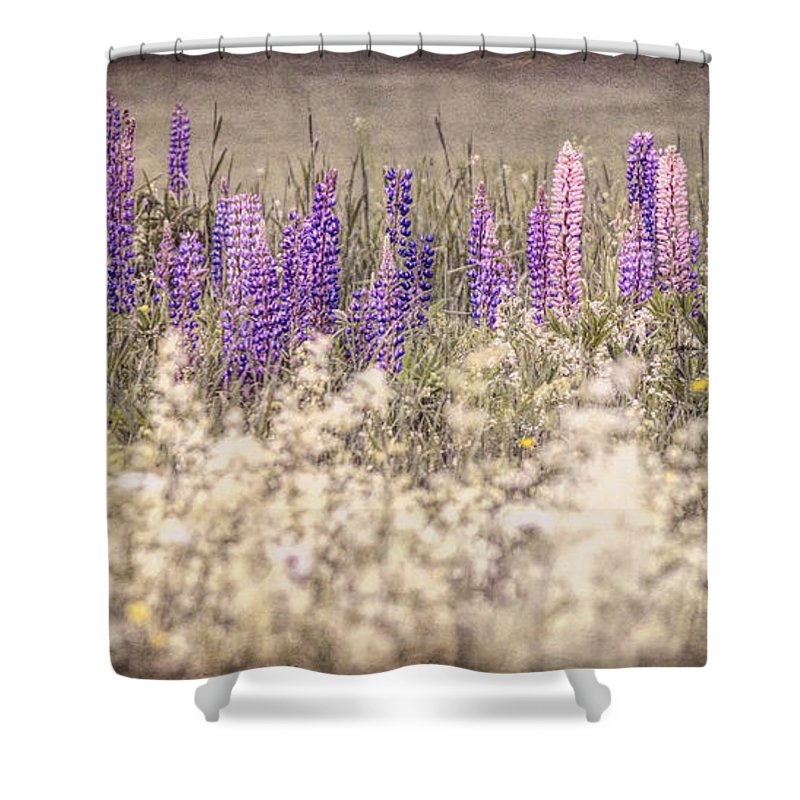 Lupine Shower Curtain featuring the photograph Lupine Remembered by Diane Moore
