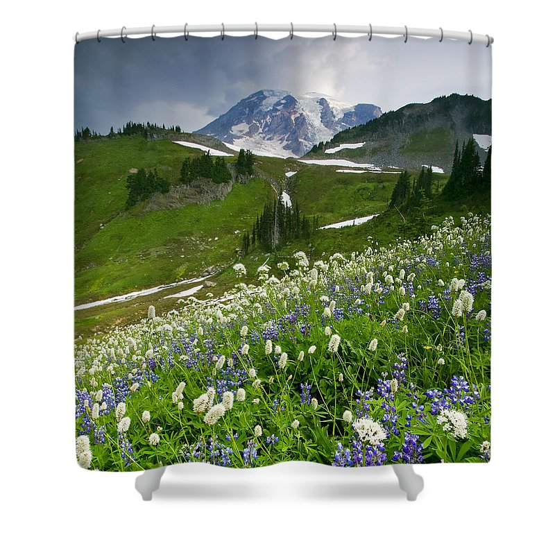 Rainier Shower Curtain featuring the photograph Lupine Storm by Mike Dawson