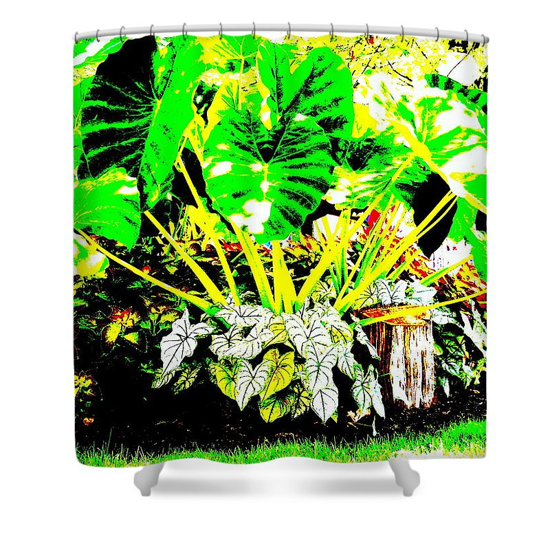 Plants Shower Curtain featuring the photograph Lush Garden by Ed Smith