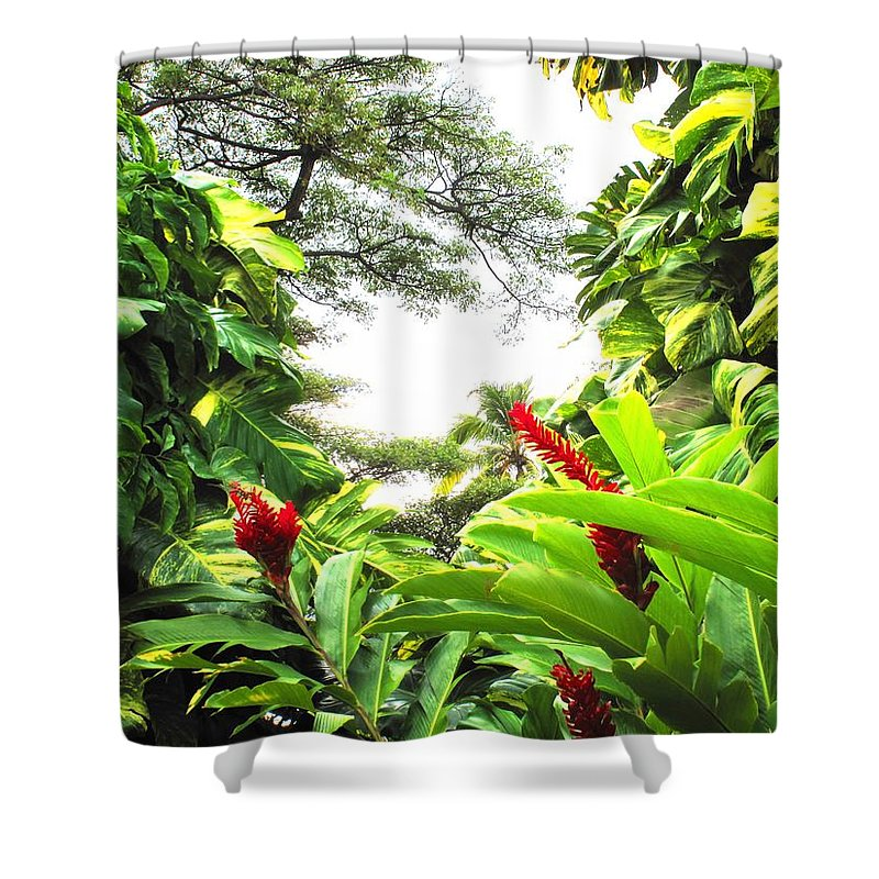 St Kitts Shower Curtain featuring the photograph Lush by Ian MacDonald