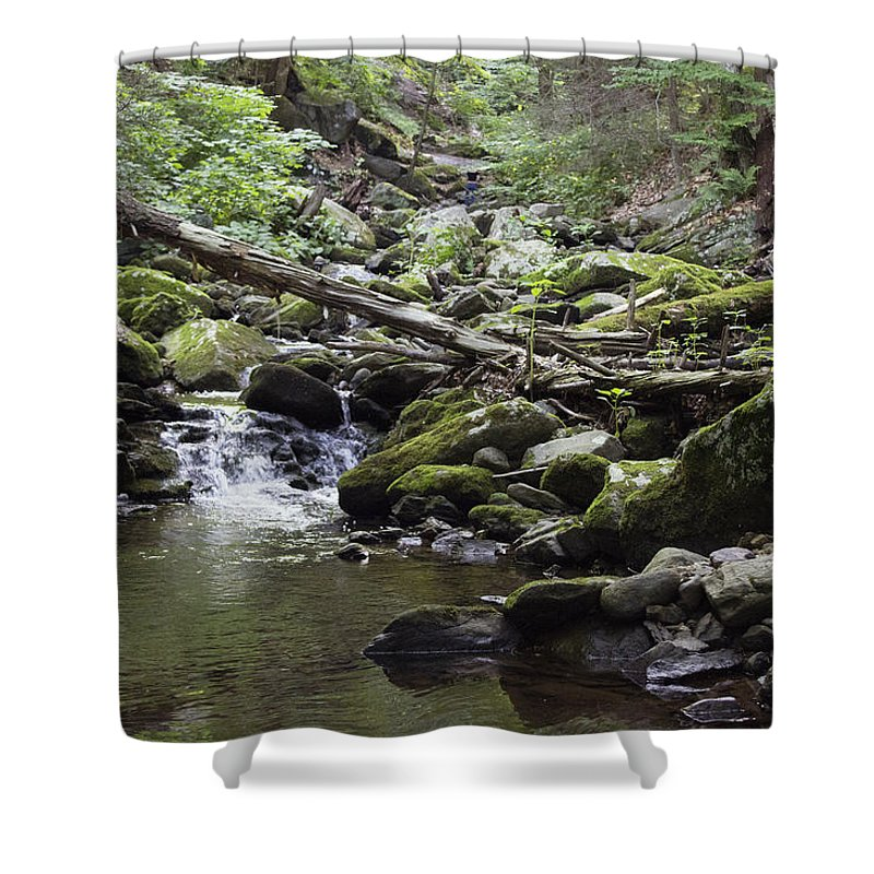 Landscape Shower Curtain featuring the photograph Lush Stream And Canopy Foliage by Geneva Renegar