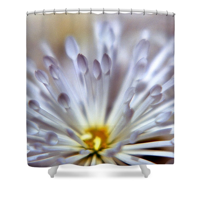 Macro Shower Curtain featuring the photograph Macro Flower 3 by Lee Santa
