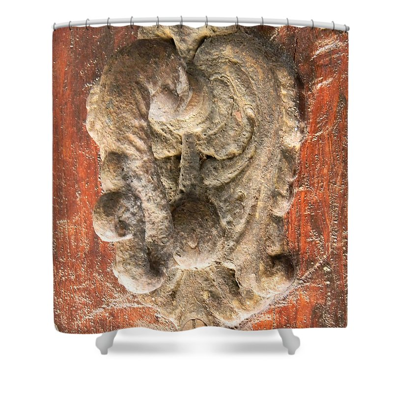 Door Shower Curtain featuring the photograph Mad Door Knocker by Marwan George Khoury