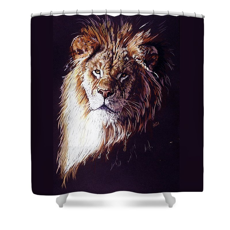 Lion Shower Curtain featuring the drawing Maestro by Barbara Keith