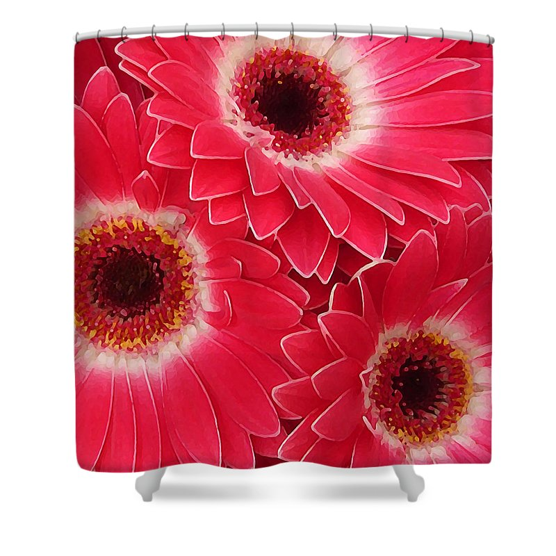Daisy Shower Curtain featuring the painting Magenta Gerber Daisies by Amy Vangsgard