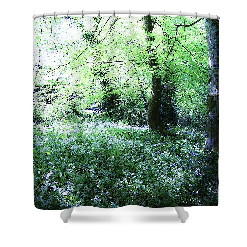 Irish Shower Curtain featuring the photograph Magical Forest At Blarney Castle Ireland by Teresa Mucha