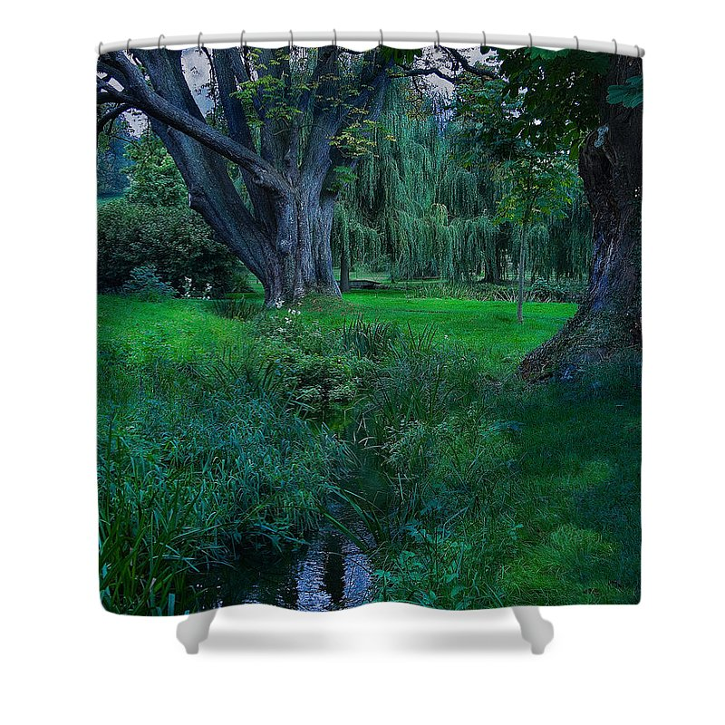 Garden Shower Curtain featuring the photograph Magical Woodland Glade by Chris Lord