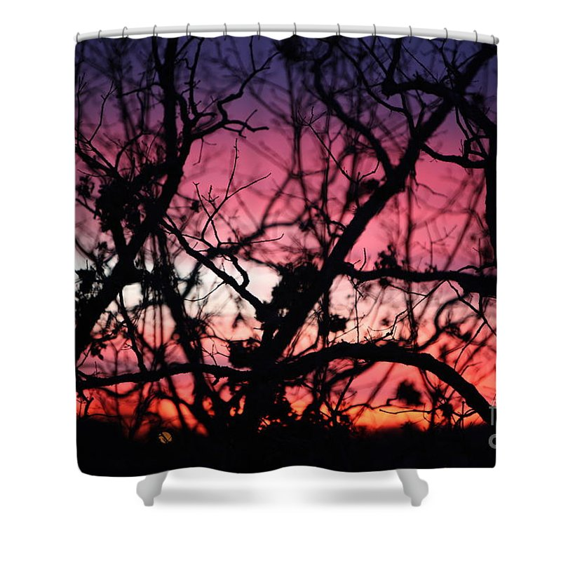 Sunset Shower Curtain featuring the photograph Magnificent Sunset And Trees by Nadine Rippelmeyer