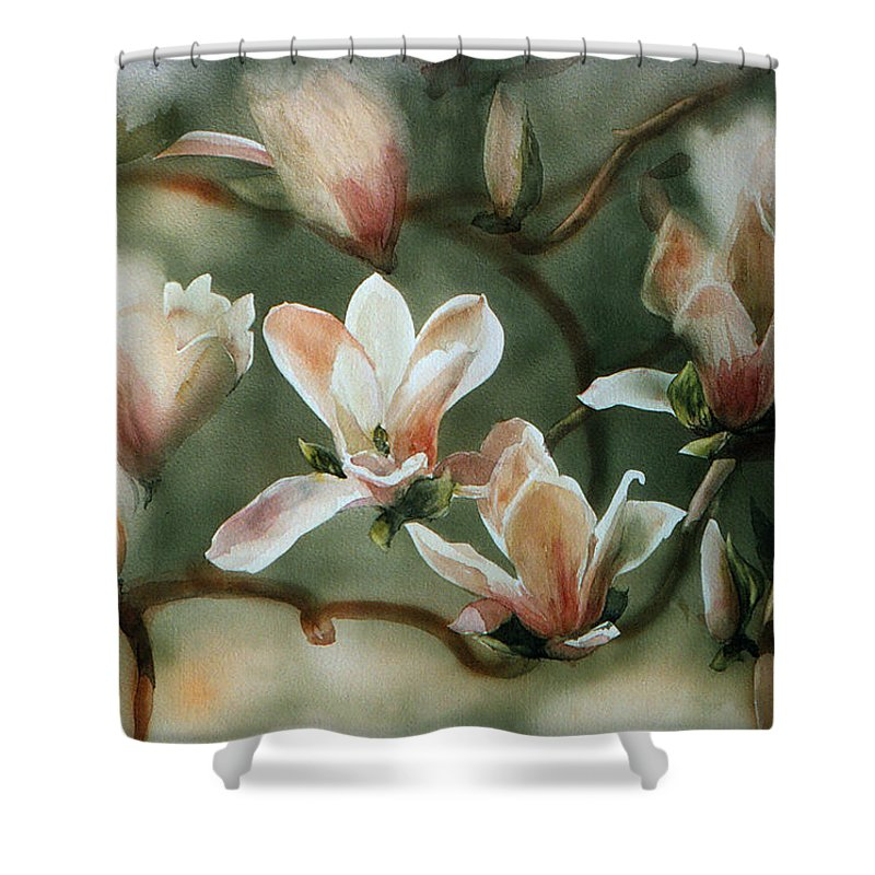Japanese Tulip Tree Shower Curtain featuring the painting Magnolias In Bloom by Maryann Boysen
