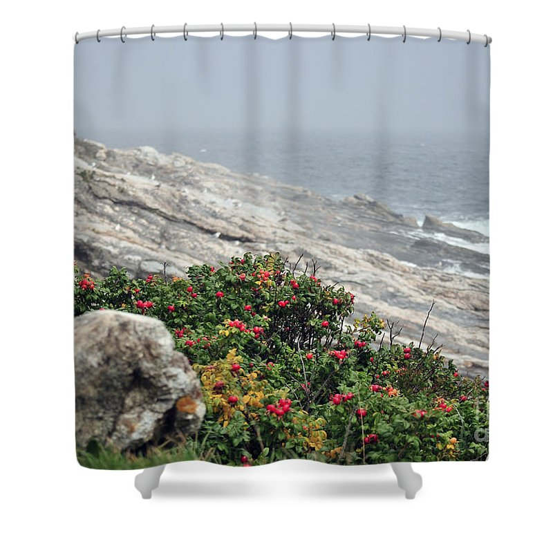Maine Shower Curtain featuring the photograph maine 13 Pemaquid Lighthouse Shoreline Before Storm by Terri Winkler