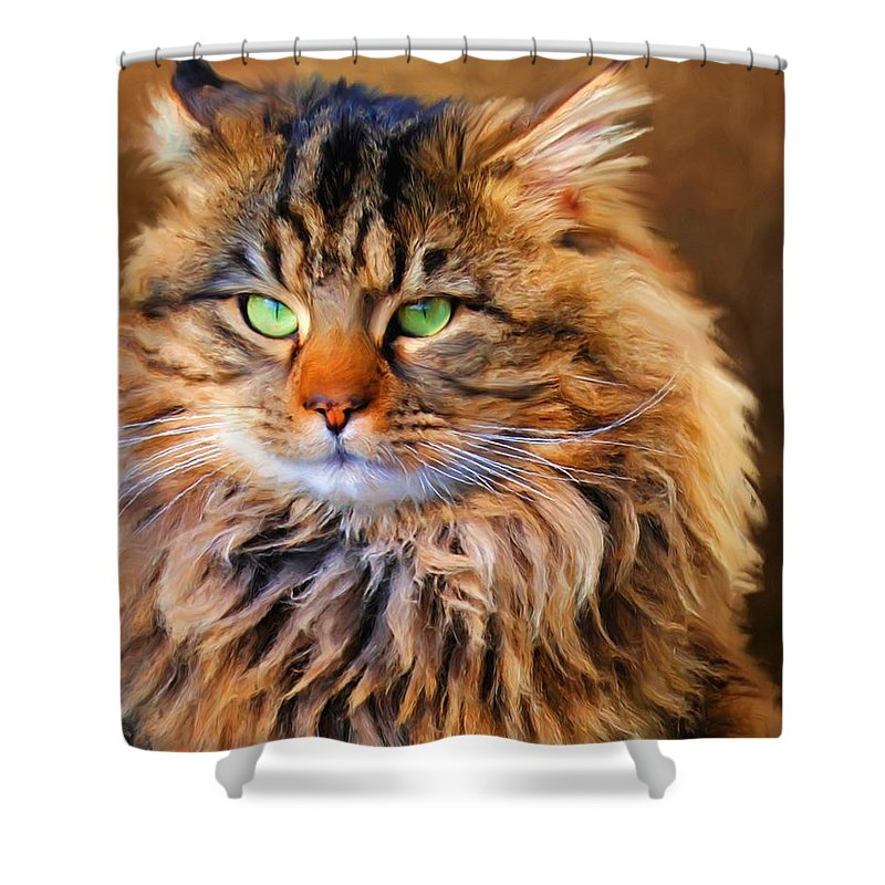 Maine Coon Shower Curtain featuring the painting Maine Coon Cat by Jai Johnson