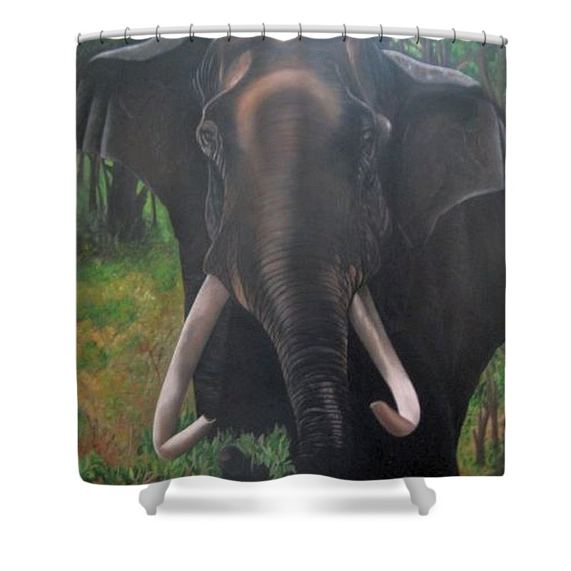 Elephant Shower Curtain featuring the painting Majestic by Usha Rai