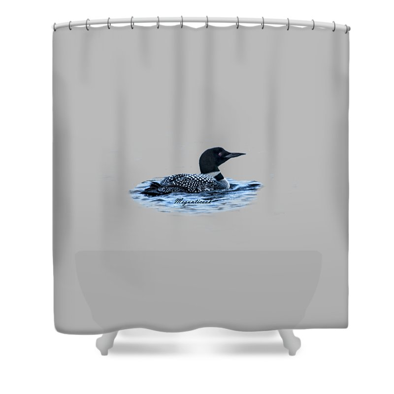 Male Mating Common Loon Shower Curtain For Sale By Daniel Hebard