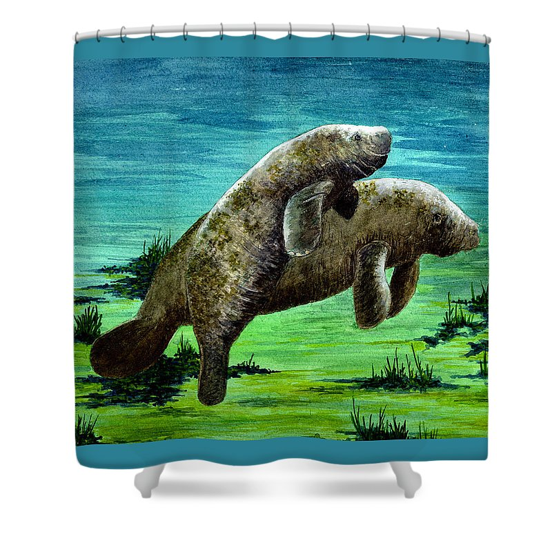 Manatee Shower Curtain featuring the painting Manatee Mother And Young by Michael Vigliotti
