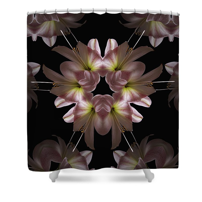 Mandala Shower Curtain featuring the digital art Mandala Amarylis by Nancy Griswold