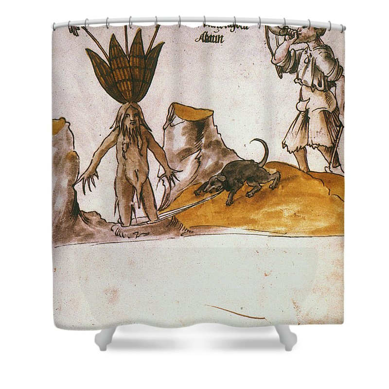 1500 Shower Curtain featuring the photograph Mandrake, C1500 by Granger