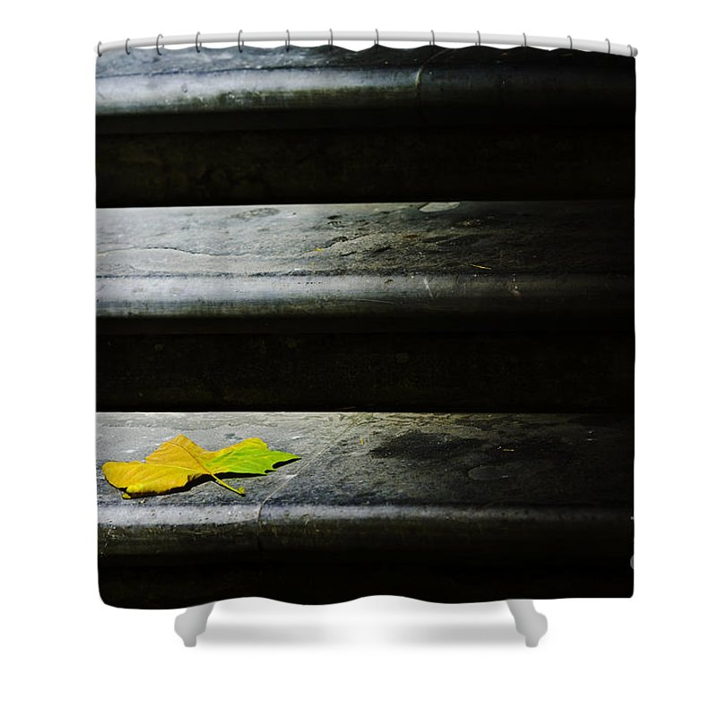 Maple Leaf Shower Curtain featuring the photograph Maple Leaf On Step by Sheila Smart Fine Art Photography