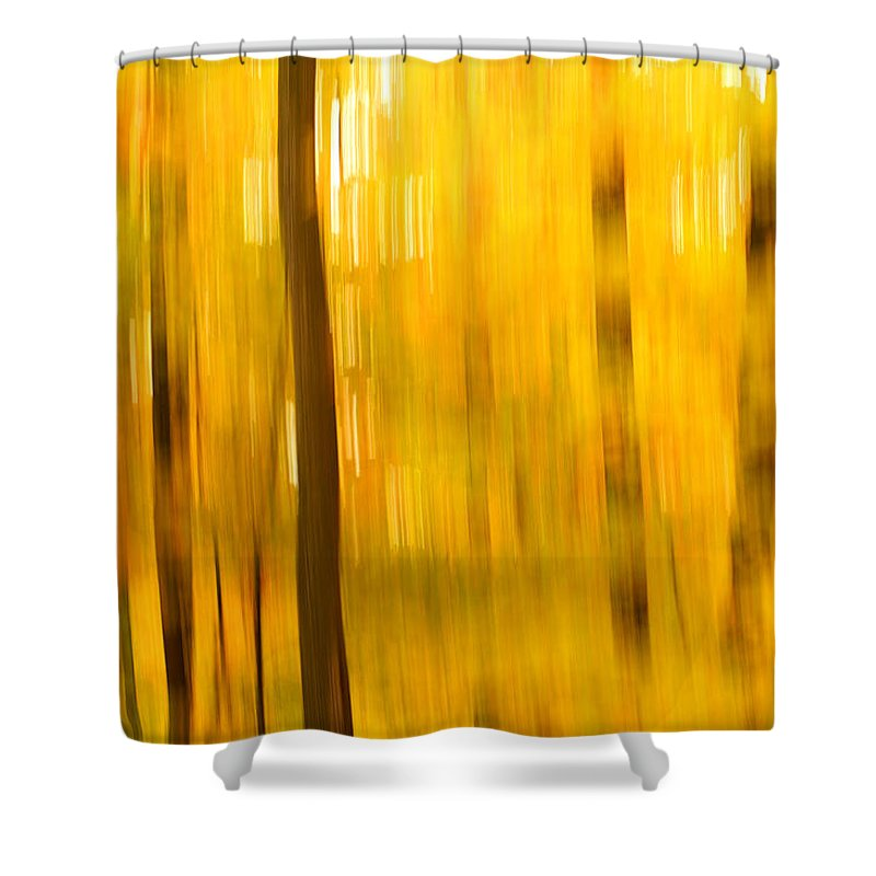 Abstract Photo Shower Curtain featuring the photograph Maple Magic by Bill Morgenstern