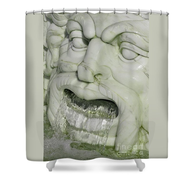 Fountain Shower Curtain featuring the photograph Marble Head by Ann Horn