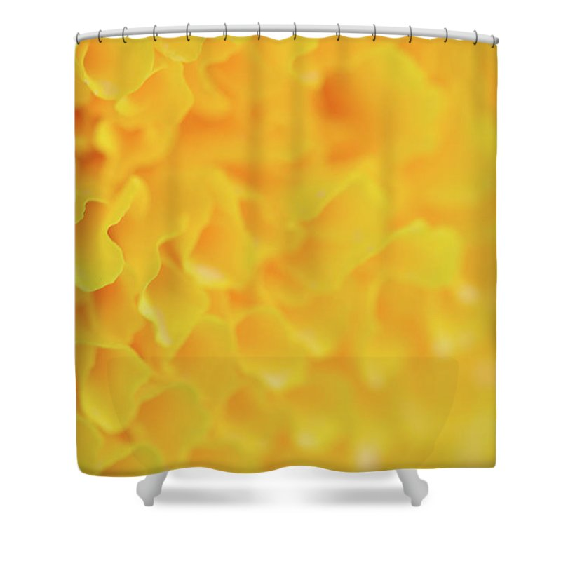Marigold Shower Curtain featuring the photograph Marigold Texture by Thitiwut Thitiprasert