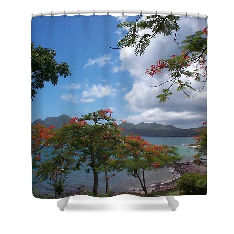 Donation Shower Curtain featuring the photograph Martinique by Mary-Lee Sanders