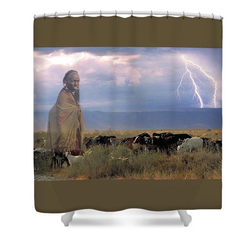Cattle Shower Curtain featuring the photograph Masaii Cattle by Don Schimmel