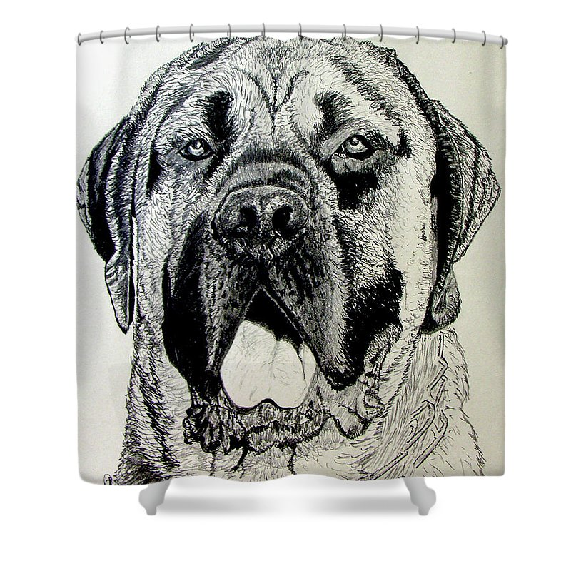 Mastiff Shower Curtain featuring the drawing Mastiff by Stan Hamilton