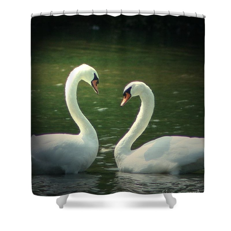 Nature Wildlife Ohio Waterscape Landscape Swans Lake Pond Shower Curtain featuring the photograph Mates For Life by Dawn Downour