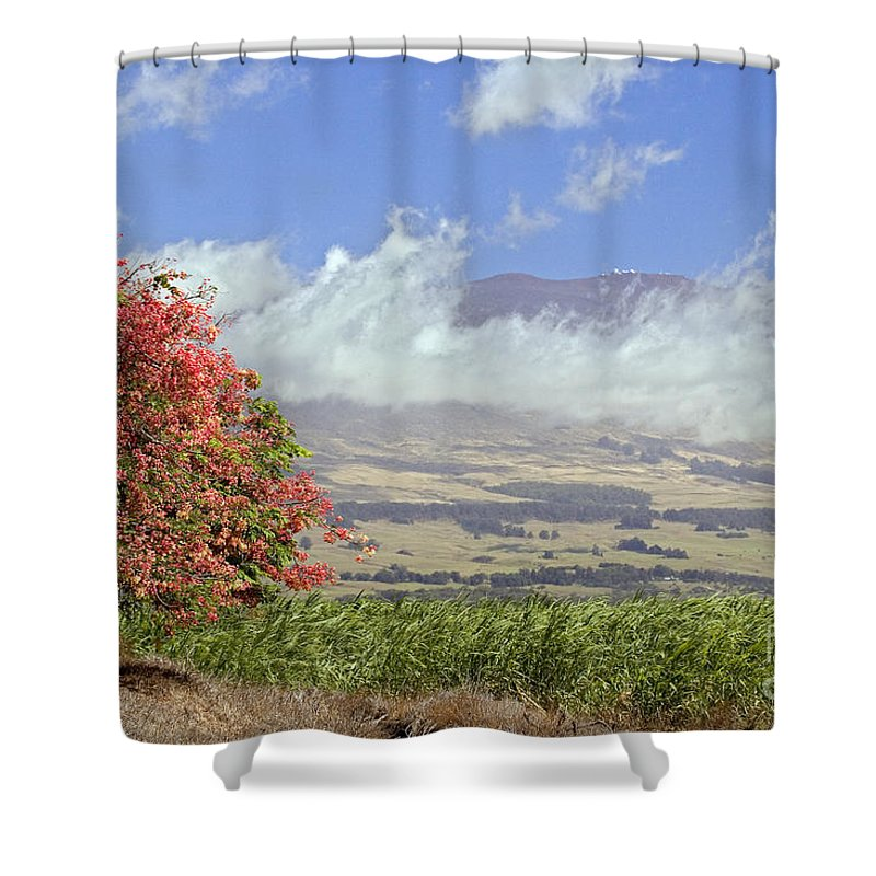 Afternoon Shower Curtain featuring the photograph Maui Science City by Dave Fleetham - Printscapes