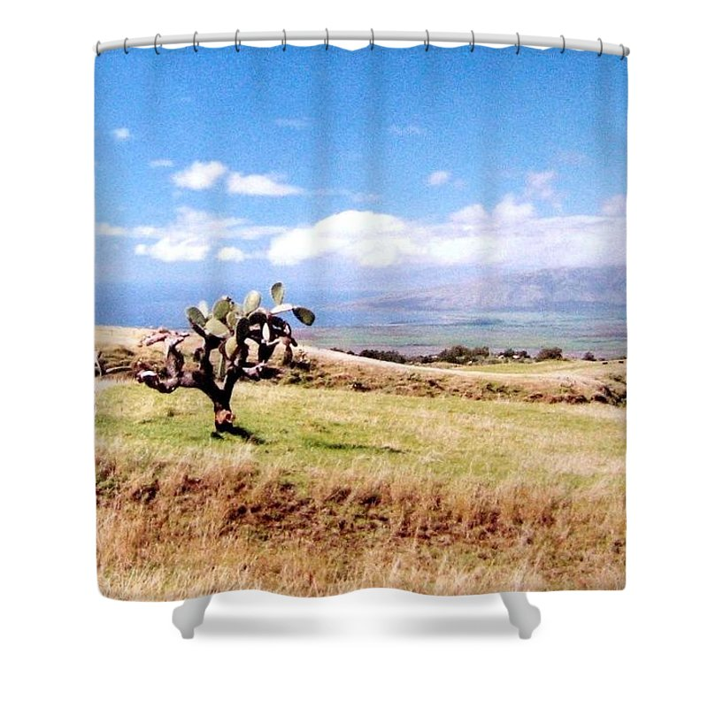 1986 Shower Curtain featuring the photograph Maui Upcountry by Will Borden