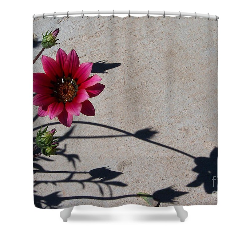 Flowers Shower Curtain featuring the photograph Me And My Shadow by Kathy McClure