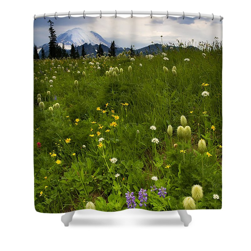 Rainier Shower Curtain featuring the photograph Meadow Beneath The Storm by Mike Dawson