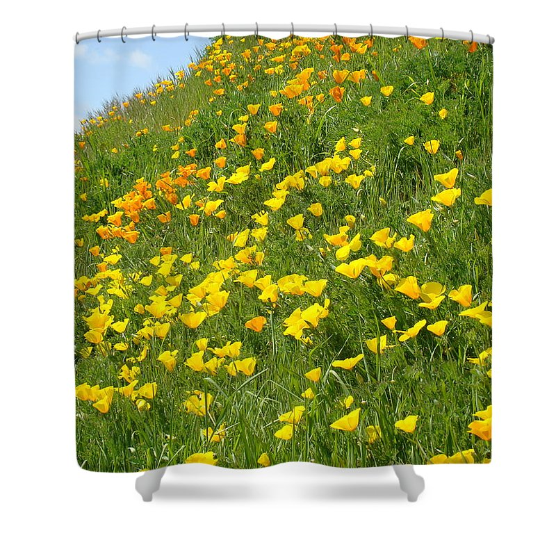 �poppies Artwork� Shower Curtain featuring the photograph Meadow Hillside Poppy Flowers 8 Poppies Artwork Gifts by Baslee Troutman