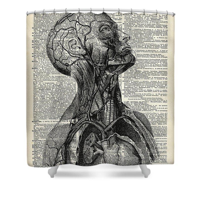 Mixed Media Shower Curtain Featuring The Drawing Medical Human Anatomy By  Fundacja Rozwoju Przedsiebiorczosci