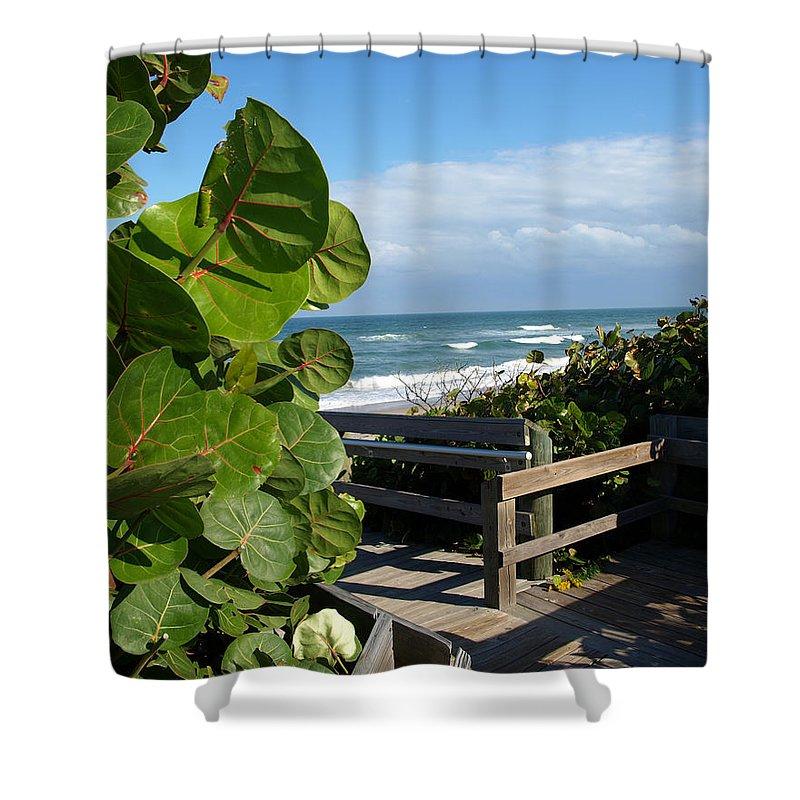Seagrape; Sea; Grape; Ocean; Cocoanut; Point; Melbourne; Beach; Florida; Waves; Surf; Seascape; Brev Shower Curtain featuring the photograph Melbourne Beach Florida by Allan Hughes