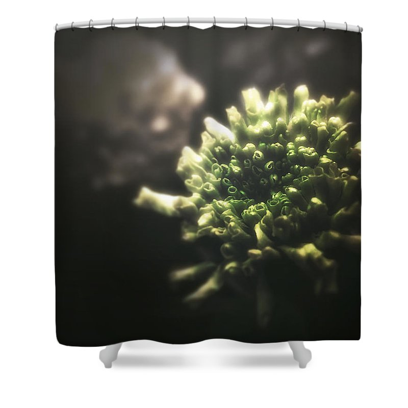 Flower Shower Curtain featuring the photograph Memento Mori by Michael Dalla Costa