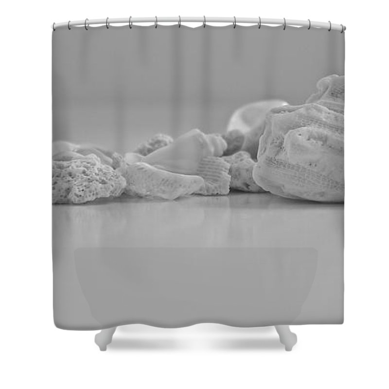 Summer Shower Curtain featuring the photograph Memories Of Summer by Cook King