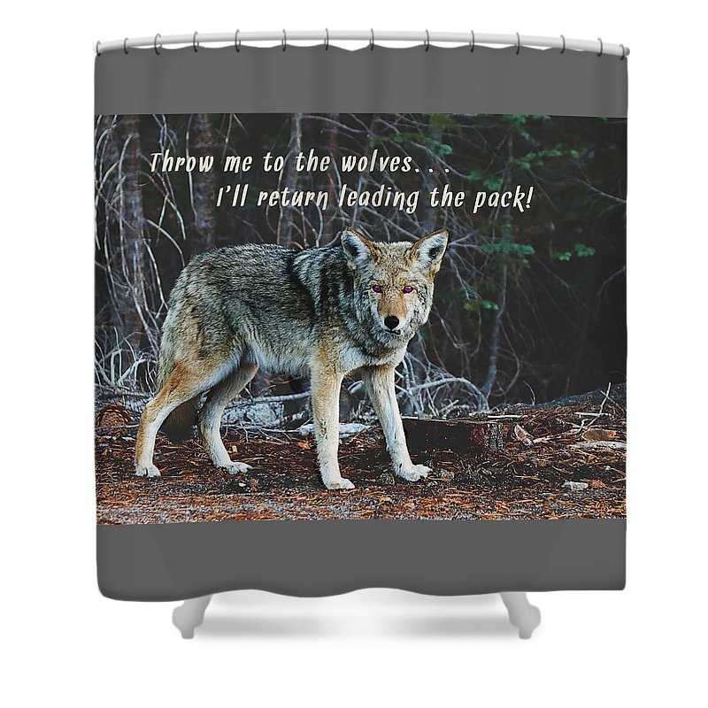 Inspirational Shower Curtain featuring the photograph Menacing Wolf In The Woods Lead The Pack by Elaine Plesser