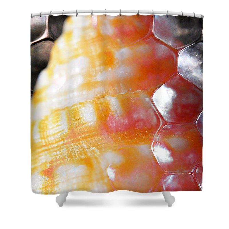 Skiphunt Shower Curtain featuring the photograph Merge 2 by Skip Hunt