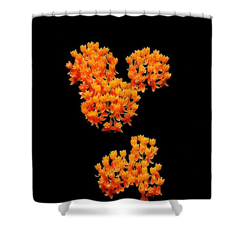 Design Flowers Shower Curtain featuring the photograph Mickey Flowers by Eric Liller