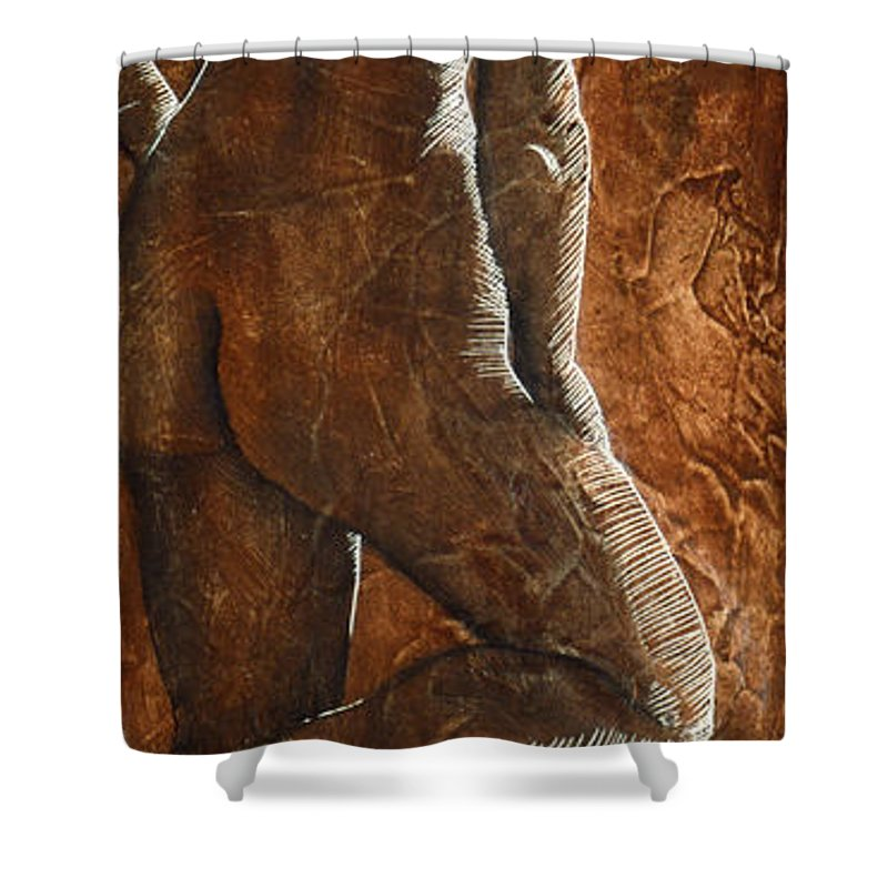 Nude Shower Curtain featuring the painting Mickey Xx by Richard Hoedl