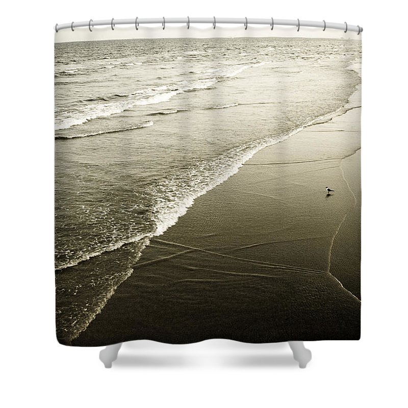 Ocean Shower Curtain featuring the photograph Mid-summer Morning by Marilyn Hunt