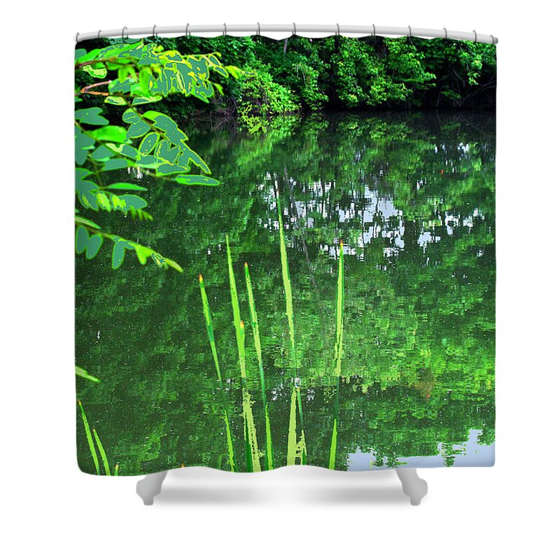 Black Creek Shower Curtain featuring the photograph Mill Pond Reflections by Ian MacDonald