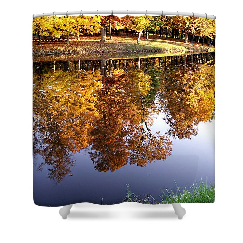 jenny Gandert Lake Gold Mining Water Reflection Sky Blue Yellow Maple Maples Trees Autumn Fall Grass Real Shower Curtain featuring the photograph Mining For Gold by Jenny Gandert