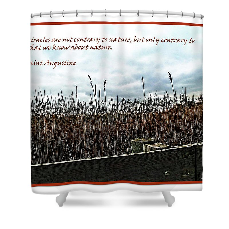 Brown Shower Curtain featuring the digital art Miracle Landscape And Inspiration by Joan Minchak