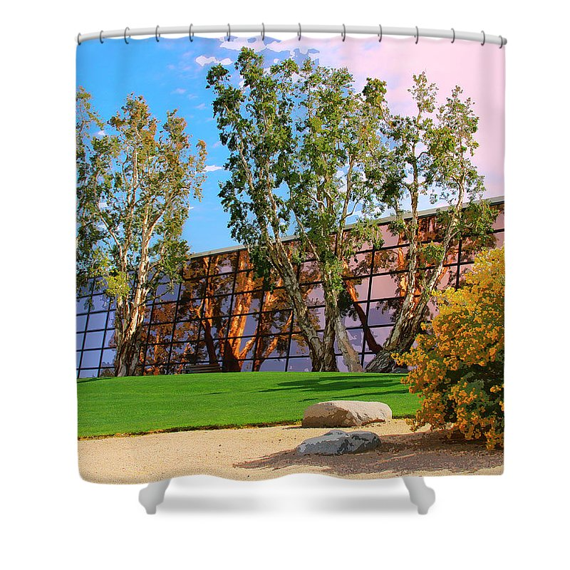 Palm Springs Shower Curtain featuring the photograph Mirror 2 by William Dey
