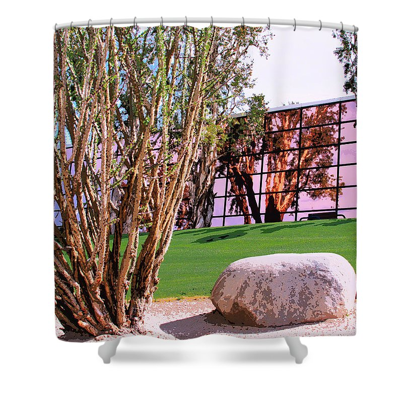 Palm Springs Shower Curtain featuring the photograph Mirror Mirror Palm Springs by William Dey