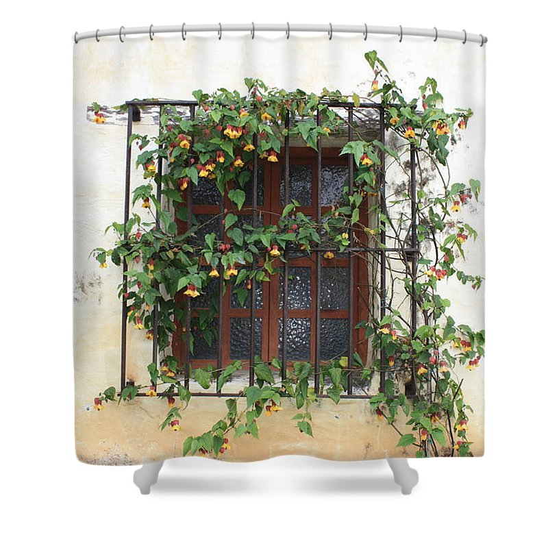 Window Shower Curtain featuring the photograph Mission Window With Yellow Flowers by Carol Groenen